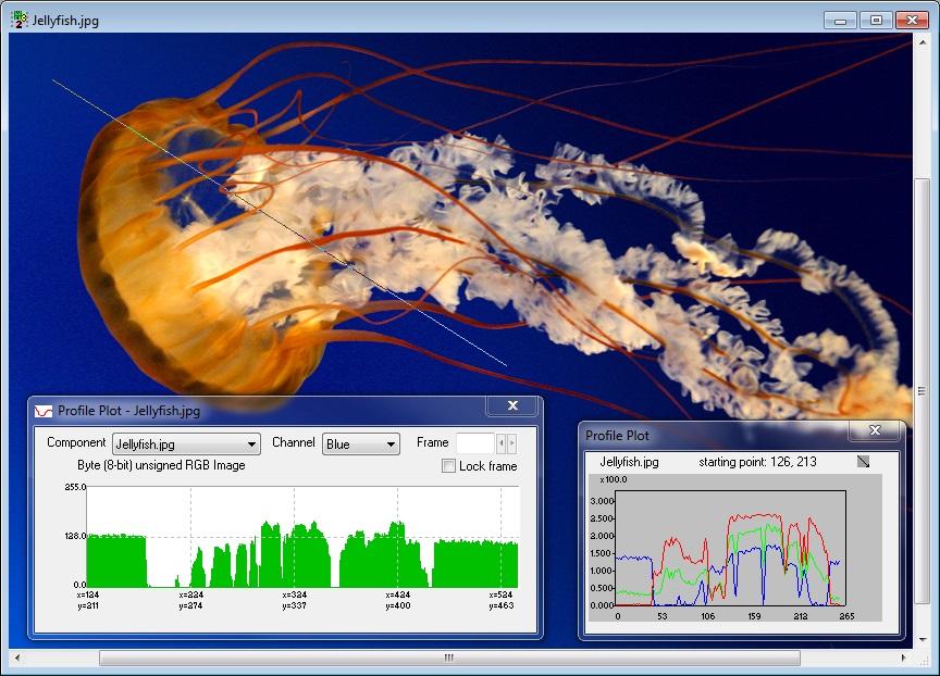 CVI Data Visualization Example